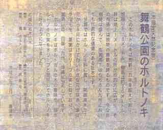 karatsu4.jpg